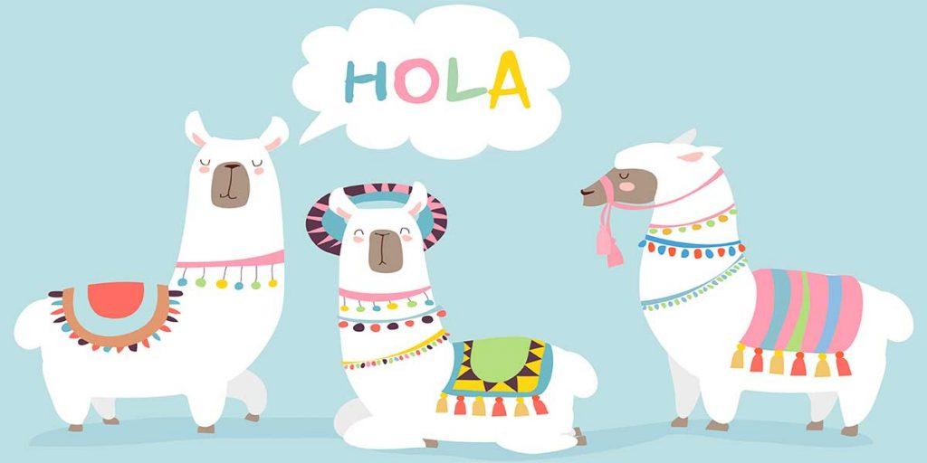 3 alpacas greet you